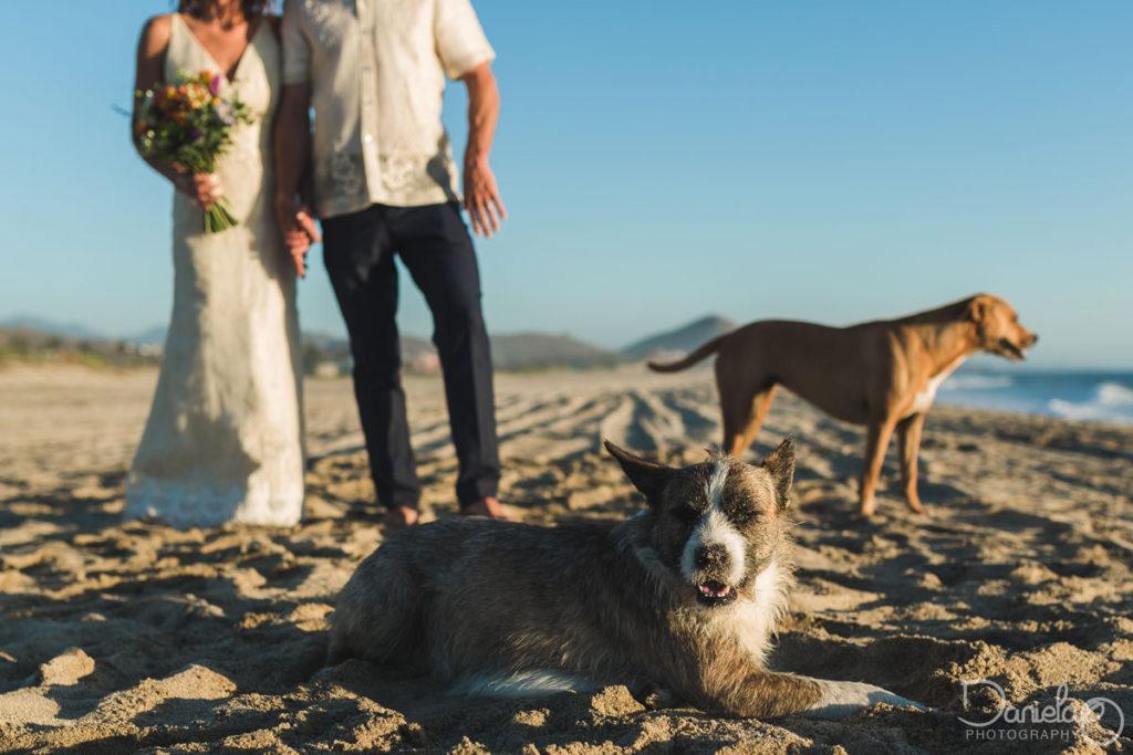 Rancho Pescadero Photographer Wedding Cabo